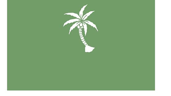 Palmenhaus München Favicon