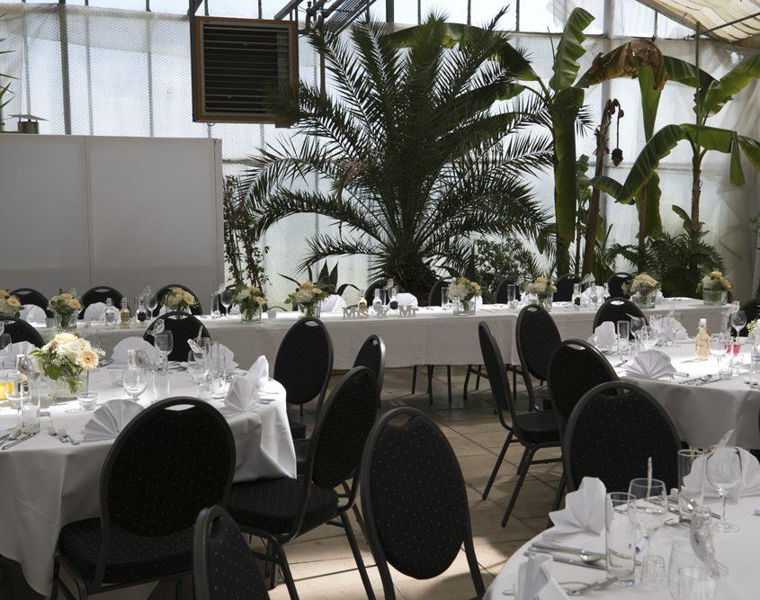Galerie - es ist eingedeckt - Palmenhaus München