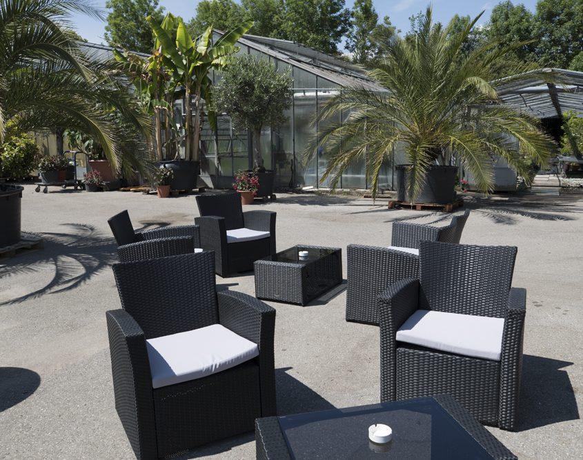 Galerie - Lounge-Sessel im Hof - Palmenhaus München